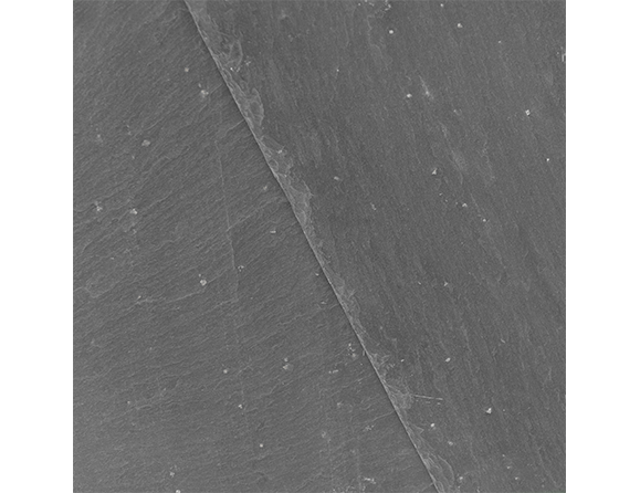 ardoise avec le pyrite