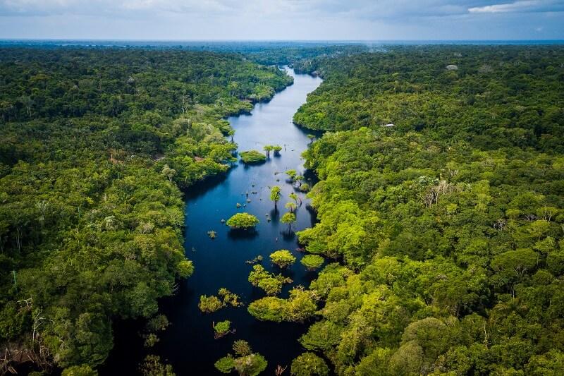 protéger l'Amazonie de la déforestation